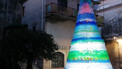 Photo of L'albero di Natale con 4mila bottiglie ad Aiello Calabro