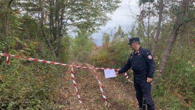 Photo of Controlli e sequestri nei Comuni di Grisolia, Aieta e Verbicaro