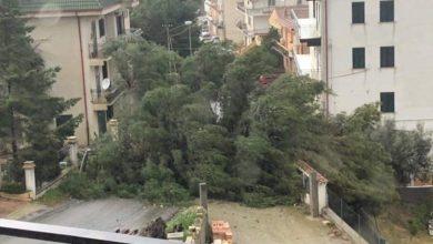 Photo of Raffiche di vento a 100km/h, allarme maltempo nel Cosentino