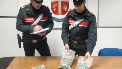 Photo of In trasferta da Locri con quasi 300 grammi di marijuana: arresti e denunce