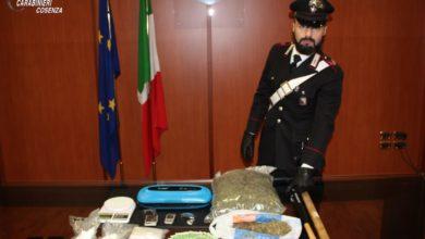Photo of Blitz a Cosenza, Nucleo Investigativo trova oltre un chilo e mezzo di droga