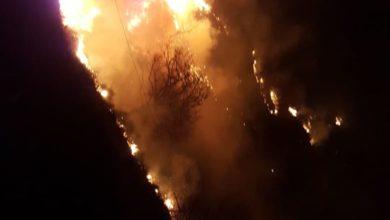 Photo of Due vasti incendi nel Cosentino: ecco le foto di Dipignano e Mongrassano