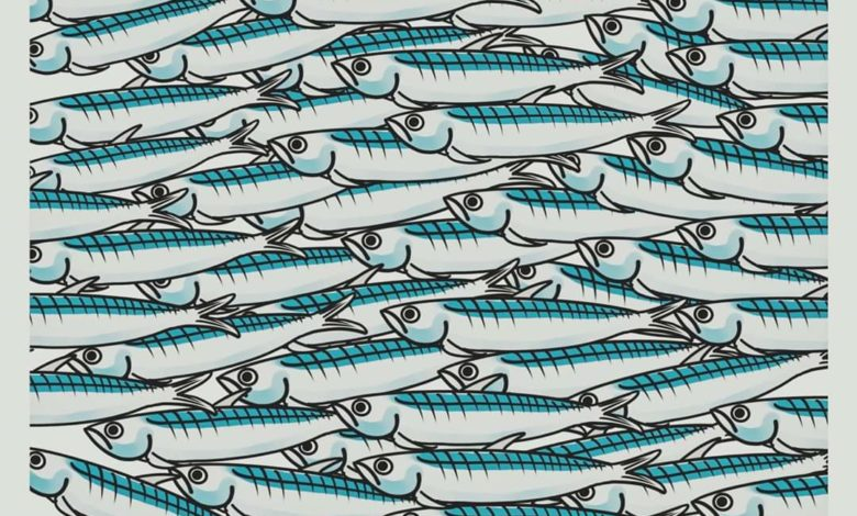 Photo of Le Sardine (nate a Bologna) sono diverse dai partiti