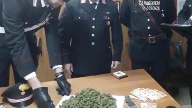 Photo of San Giovanni in Fiore, sorpreso con 240 grammi di droga: denunciato