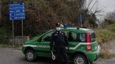 Photo of Coronavirus, Acri e Villapiana: violano il decreto, denunciati dai Carabinieri Forestale