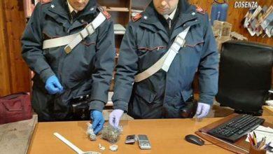 Photo of Casali del Manco, droga a domicilio: denunciato un 39enne