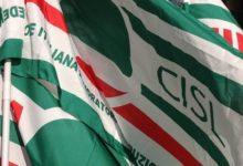 Photo of Cisl: «Stipendio ai tirocinanti? Non basta»