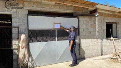 Photo of Montalto Uffugo, posti sotto sequestro due fabbricati abusivi