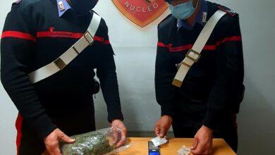 Photo of Paola, nascondeva la marijuana nella cassetta del contatore: arrestato
