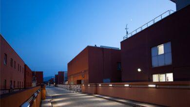 Photo of L'Unical diventa il Campus più green d'Europa