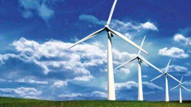 Parco eolico, il Consiglio di Stato dà ragione ai comuni di Cervicati e Mongrassano: la sentenza