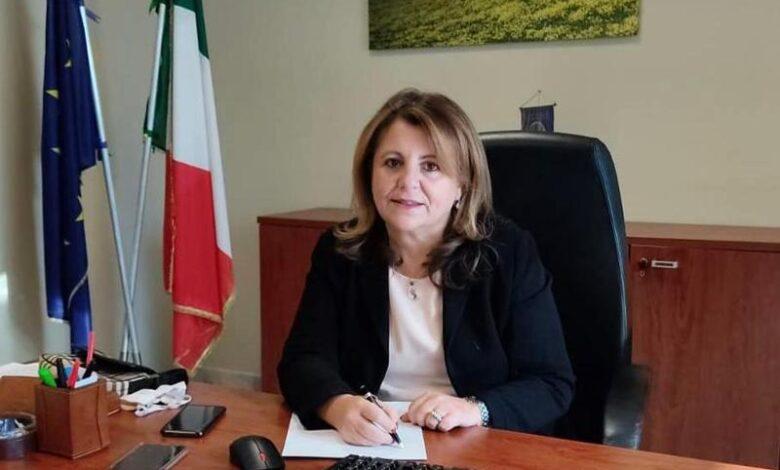 Infrastrutture Calabria, 33 milioni per strade comunali e provinciali