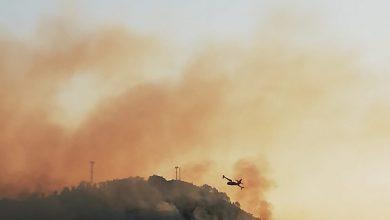 Fagnano Castello, montagna in fiamme: in azione due canadair e pompieri emiliani